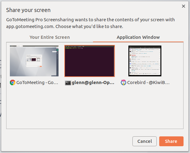 Can't share screen expect web browsers in Gotomeet