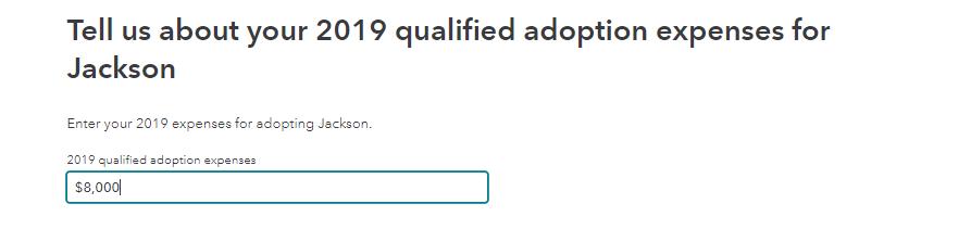 2019 Adoption expenses input